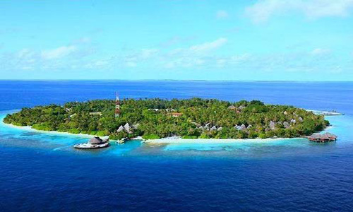 幸福岛 Canareef Resort Maldives